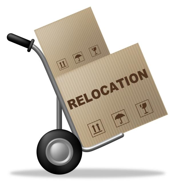 Relocating for Your Job - moving box