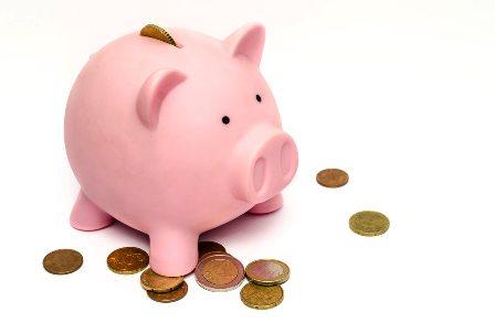 Financial Literacy - Piggy Bank